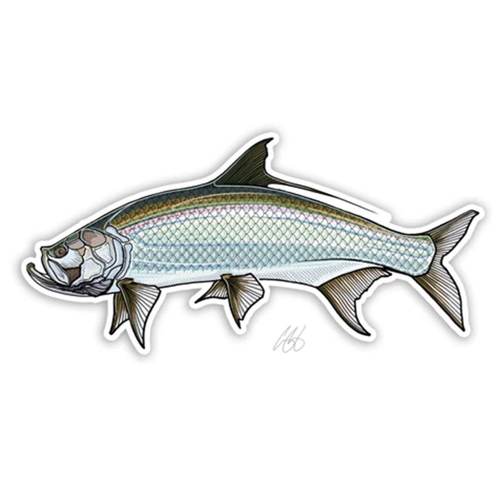 Casey Underwood Fish Decal - Salt Water