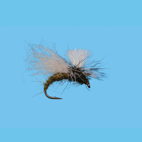 Gil's Snow Shoe Caddis Olive