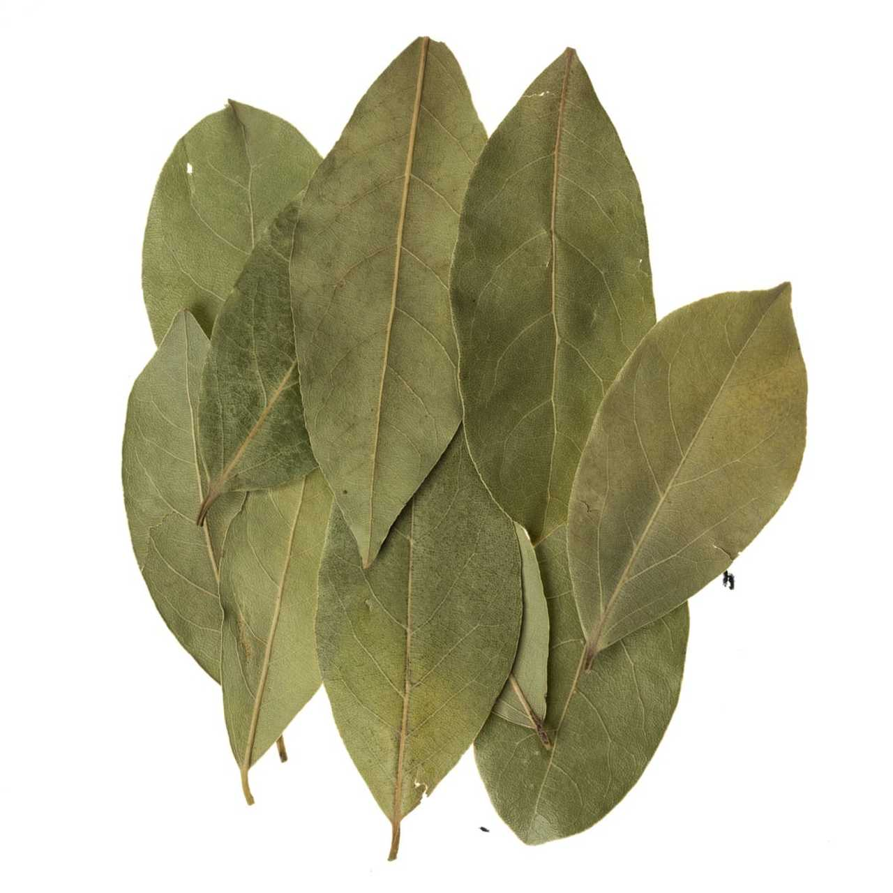 Bay Leaves Pack