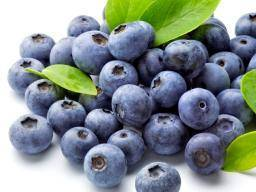 Berries - Blueberries Punnet