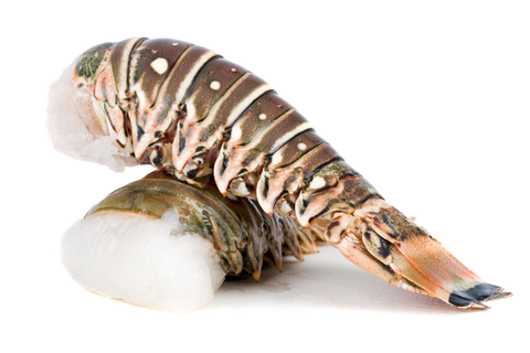 Raw Baby Lobster Tails