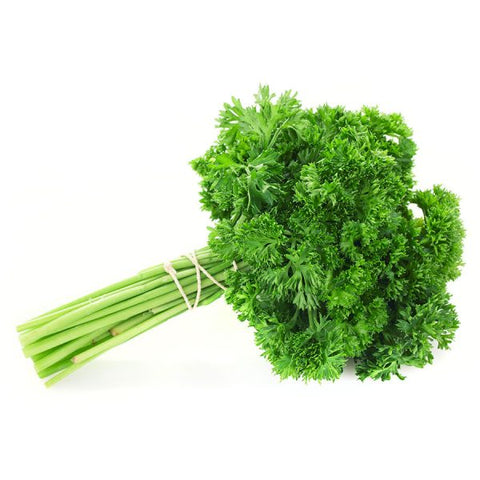 Parsley - Curly Bunch