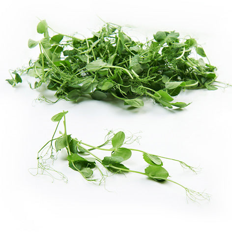 Snow Pea Tendrils