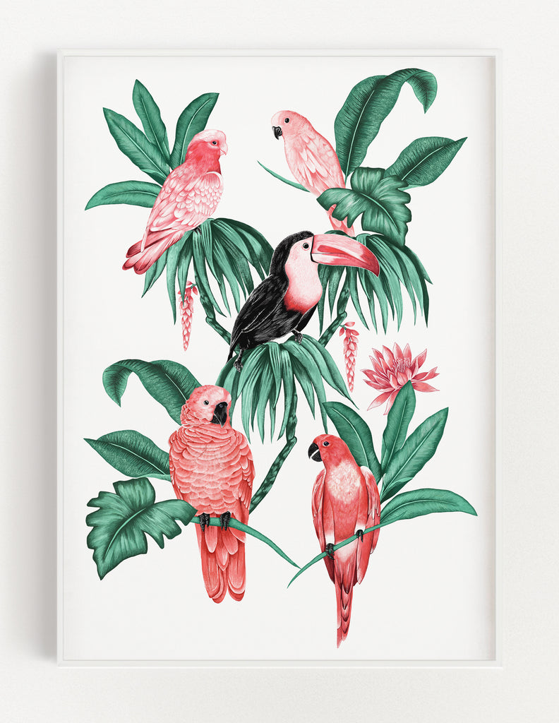 Tropical Toucan Print (White)