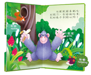 3D Interactive Book Set (Set of 4) • 立體翻轉遊戲書(全4冊)