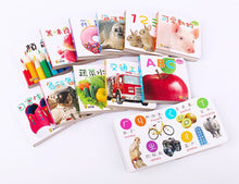 Load image into Gallery viewer, Baby's First Bilingual Board Books (Set of 12) • Baby 認知口袋書 (全套12冊)