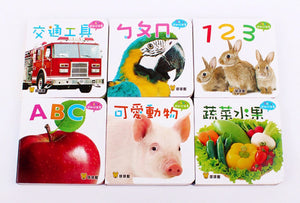 Baby's First Bilingual Board Books (Set of 12) • Baby 認知口袋書 (全套12冊)