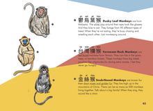 Load image into Gallery viewer, Welly Bilingual Activity Books: The Monkey King (⼩猴王)