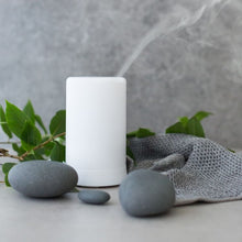 Load image into Gallery viewer, Rainpharma Aroma Diffuser 100ml