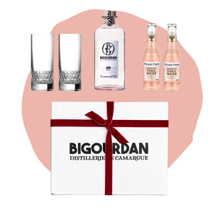 BIG GIN BOX - AROMATIC