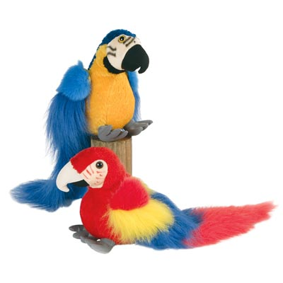 "9"" Macaws"