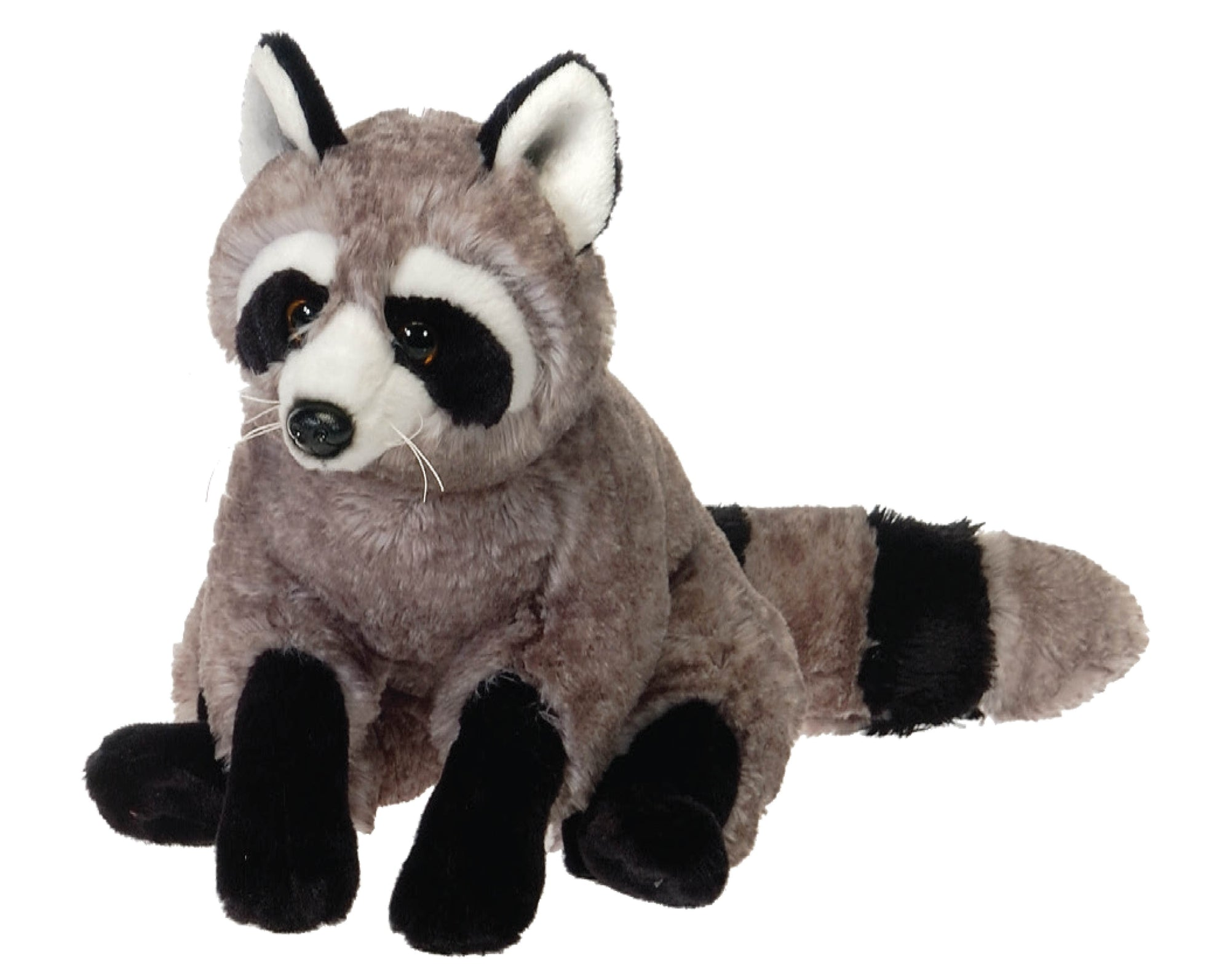 "12"" Raccoon"