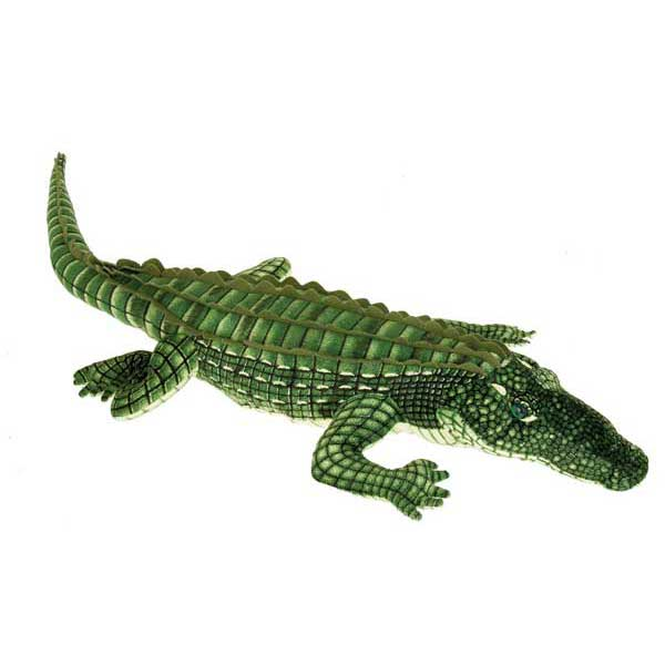 "41"" Green Alligator"