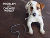puppy holding chewed cord