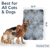 Dogs and cats next to door scratch protector graphic showing size