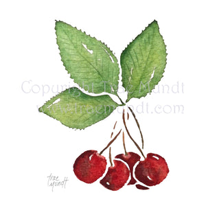 Bing - Bing Cherry  Art Print by Trae Mundt