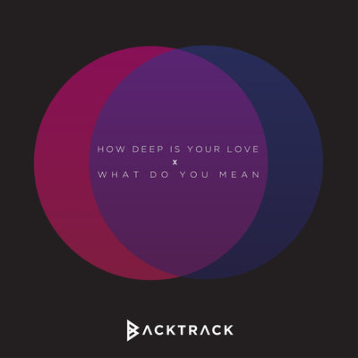How Deep is Your Love / What Do You Mean (Calvin Harris & Justin Bieber)