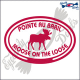 CANADA MOOSE ON THE LOOSE IN POINTE AU BARIL IN OVAL 5 INCH  DECAL