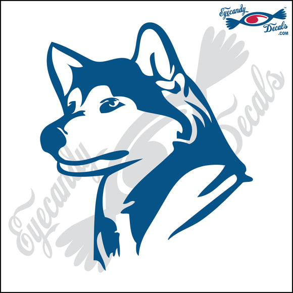 HUSKY DOG HEAD  5