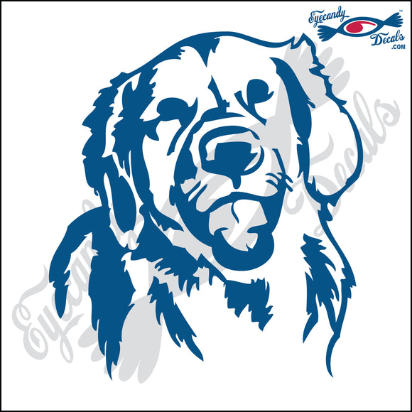RETRIEVER DOG HEAD  5