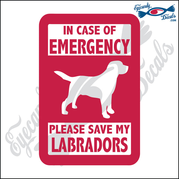 PLEASE SAVE MY LABRADORS  5