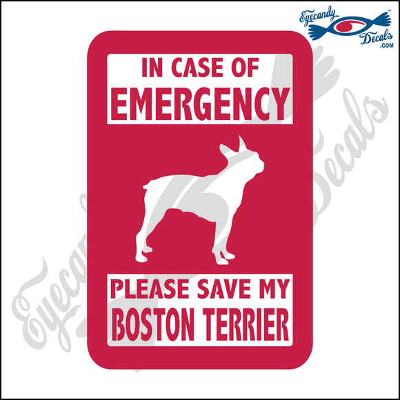 PLEASE SAVE MY BOSTON TERRIER  5
