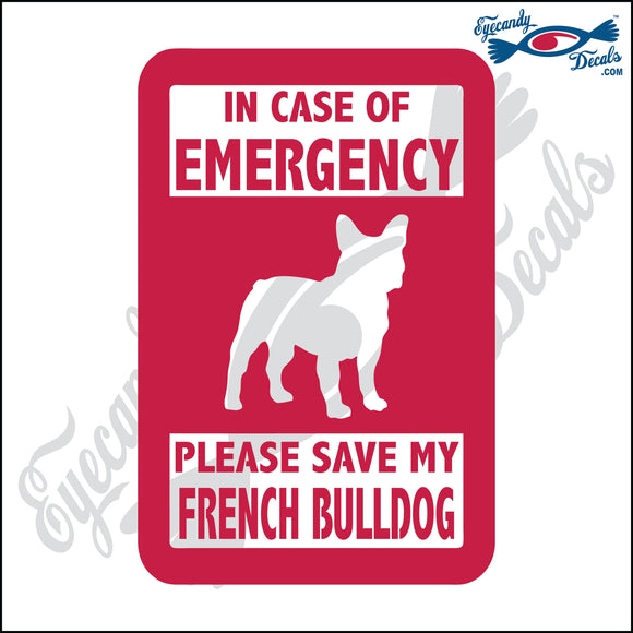 PLEASE SAVE MY FRENCH BULLDOG  5