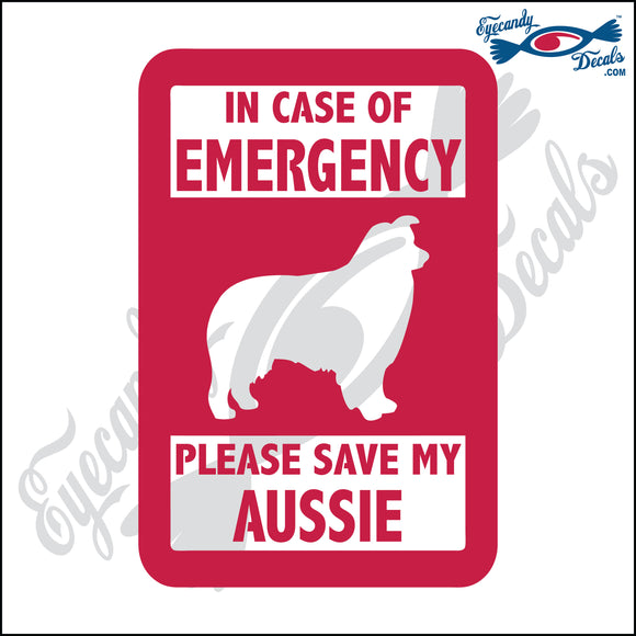PLEASE SAVE MY AUSSIE  5