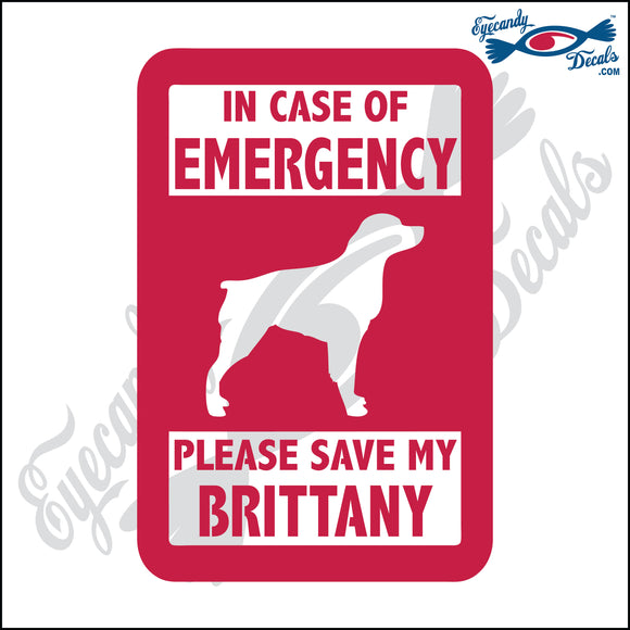 PLEASE SAVE MY BRITTANY  5