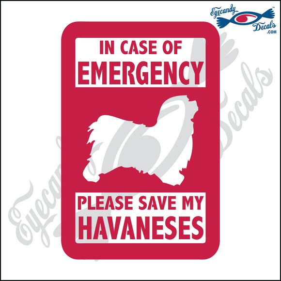 PLEASE SAVE MY HAVANESES  5