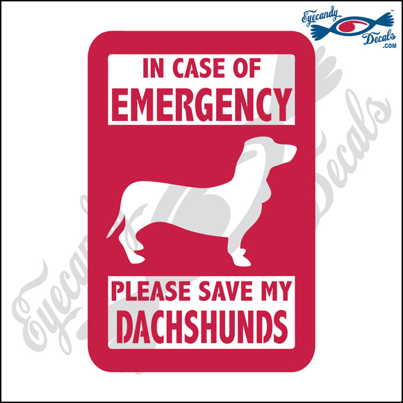 PLEASE SAVE MY DACHSHUNDS  5