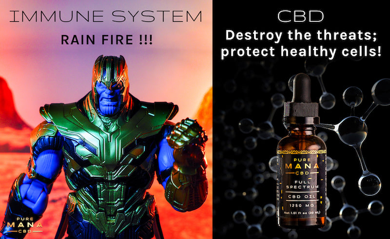Studies Say CBD Blocks COVID-19 on a Cellular Level. Here's How.