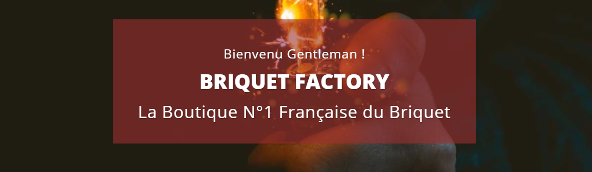 Briquet Factory