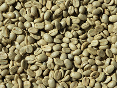 60 Day Course Unprocessed 100% Natural Green Coffee Beans Arabica