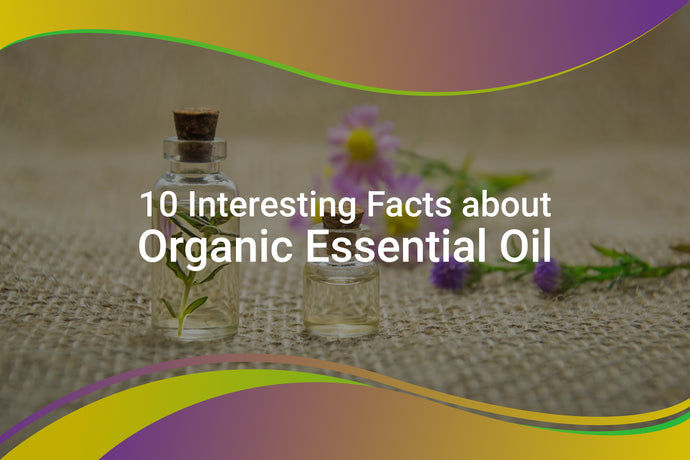 10 Quick Interesting Facts about Organic Essential Oil