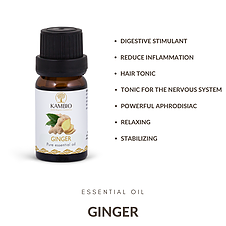 Kambio Nature All Natural Organic Ginger Essential Oil