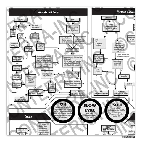 "First Aid ""At a Glance"" Flowchart"