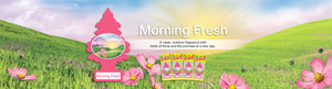 Aromatizante para carro - Little Trees (Morning Fresh) 24 UNIDADES