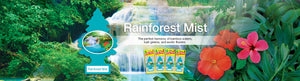Aromatizante para carro - Little Trees (Rainforest Mist) 24 UNIDADES