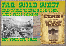 Load image into Gallery viewer, American Wild West