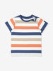Boy Blue Kids Multi Striped T-Shirt