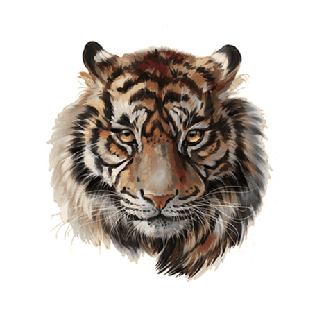 Patch Thermocollant Tigre d'Indochine