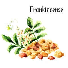 supplement frankincense pain relief