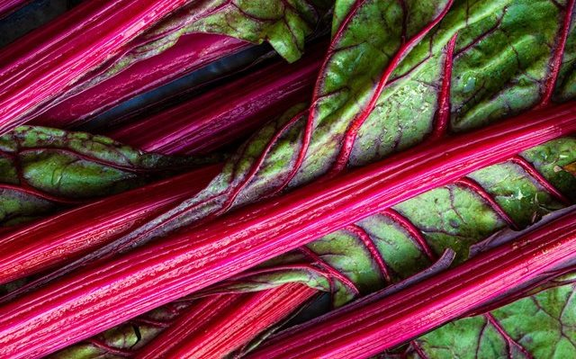 rhubarb - natural cure for constipation
