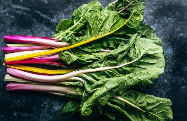 pink stems and green leaves of rhubarb