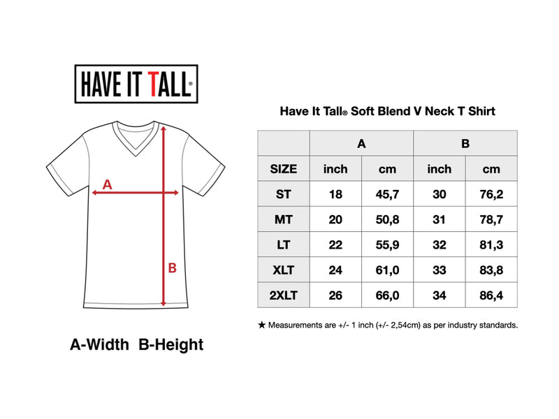 Have It Tall Soft Blend V Neck T Shirt