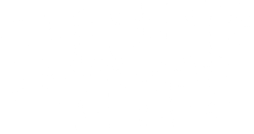 SURFING ON WHEELS