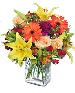 Assorted Spectacular Flowers