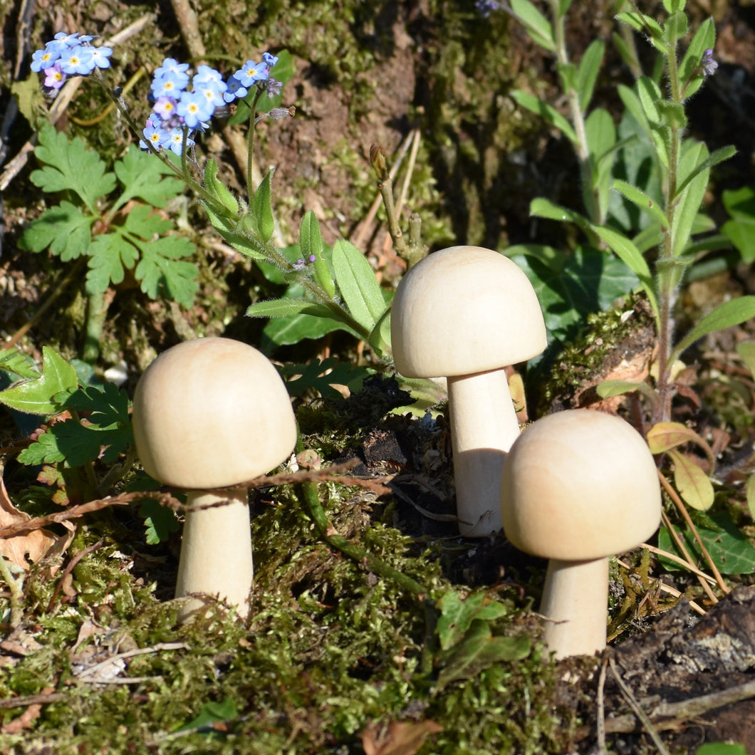Mushroom - wooden dome cap fungi / toadstool shapes - 5cm tall