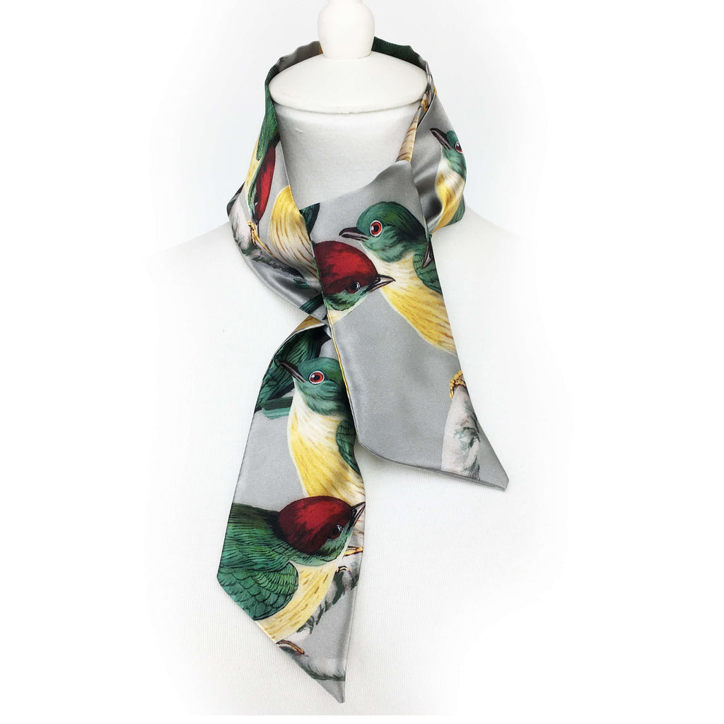 Manakin Bird Skinny Scarf - watch this bird dance